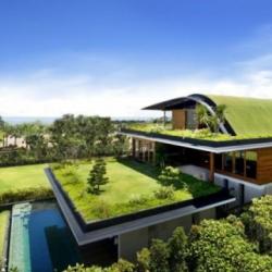 Thiết kế kiến trúc xanh nhà phố